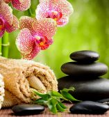 Sweedish massage, full body massage, reflexology, deep tissue massage