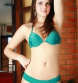 Independent Call Girls in Chandigarh