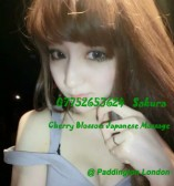 Independent Escort – Intelligent Japanese Girl – Sakura